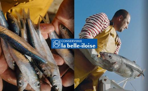 Sardinas en aceite de cacahuete - La Belle-Iloise
